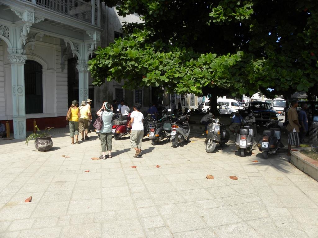Lots of motorbikes