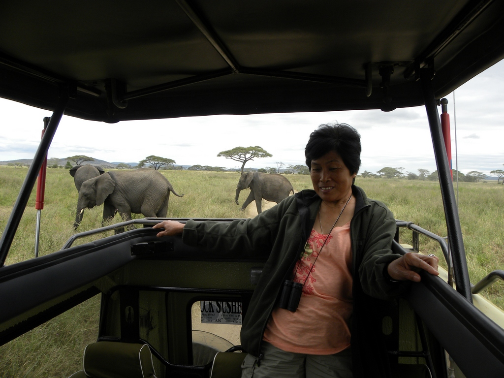 Mama Tembo and Her Elephants